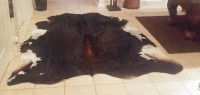 BRAND NEW COWHIDE RUG, Other, BRAND NEW COWHIDE RUG never been walked on