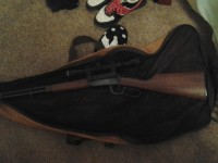 Winchester rifle, Gun, Winchester , carry case