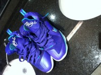 lebron 9 hornets, Other, nike size 10.5