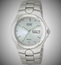 citizen eco-drive wr100 watch, Luxury Watch, Citizen Eco-Drive WR 100, Stainless Steel