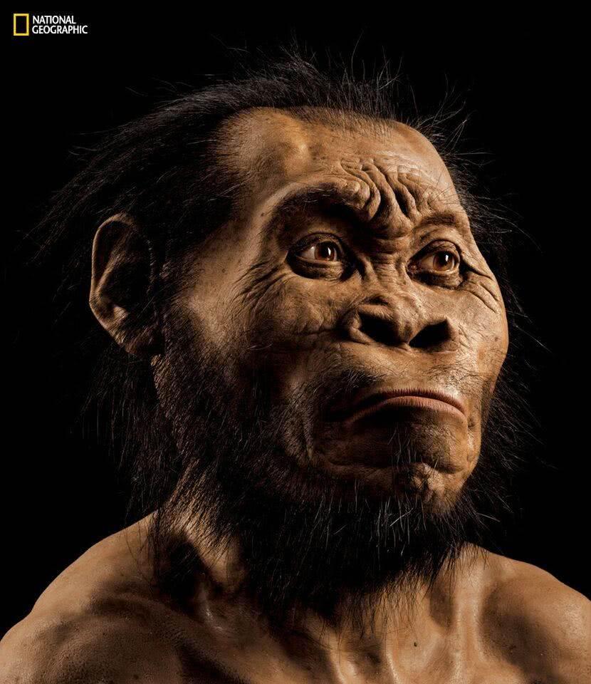 Homo Naledi - Cave Storage vs Stor-Age