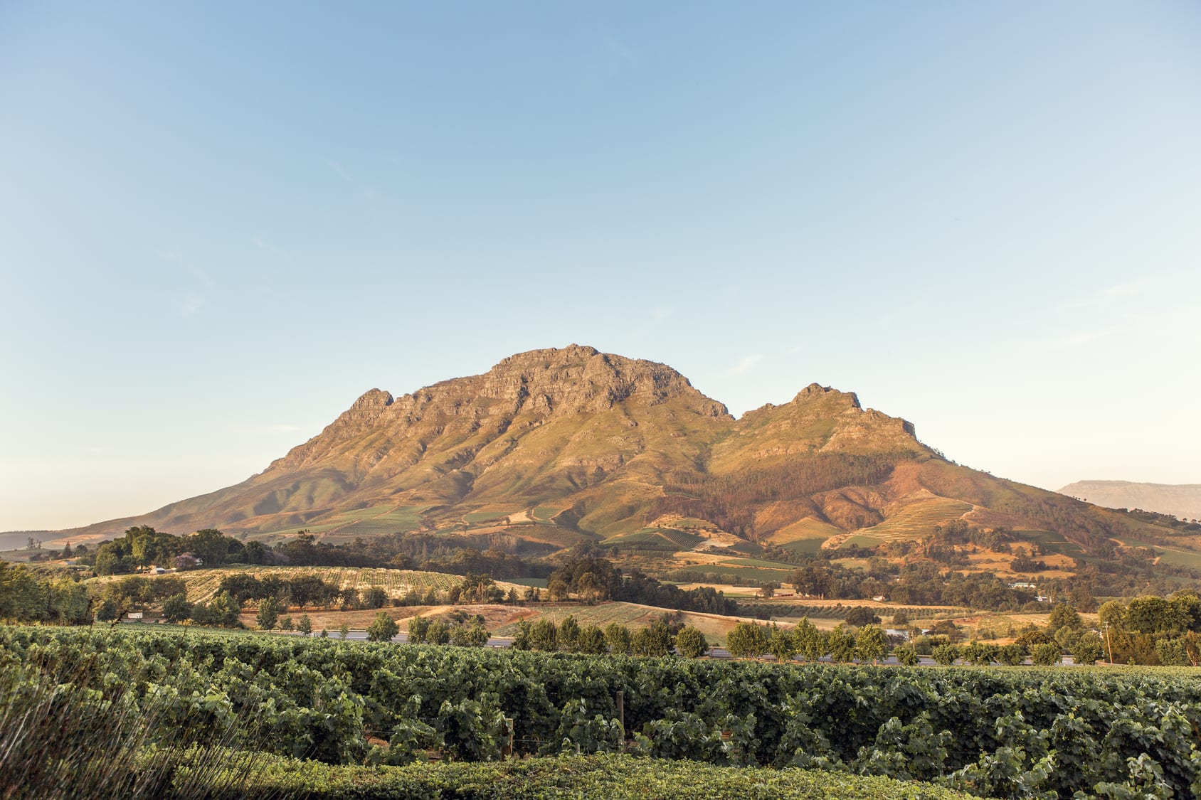 What to do on a day out in Stellenbosch
