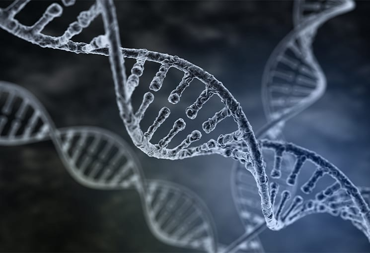 """Dark DNA"" and Your Specific Risk of Prostate Cancer 