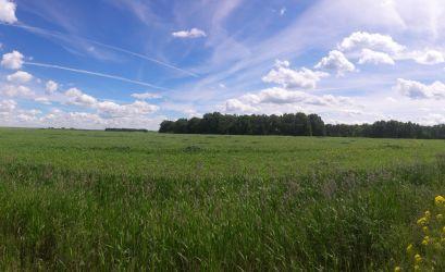 Земельный участок для фермерского хозяйства Озерки