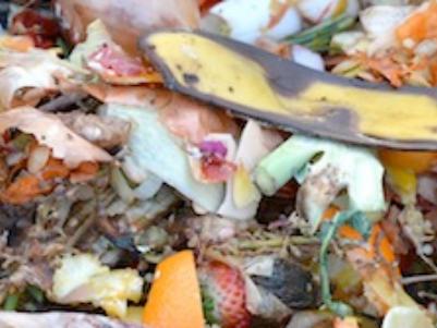 Resourcify Abfallverzeichnis Kompostmaterial/Grünabfall - AVV 20 02 01
