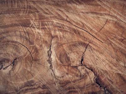 Resourcify Abfallverzeichnis Holz A Ⅰ - AVV 15 01 03