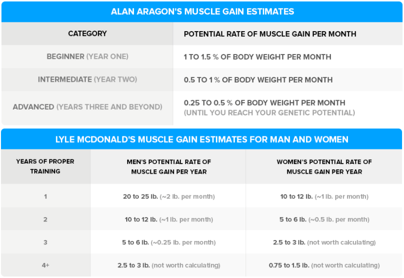 How much muscle can we gain naturally