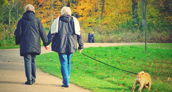 Retired couple walking their dog in park