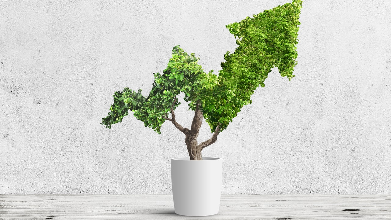 How HR can drive business sustainability