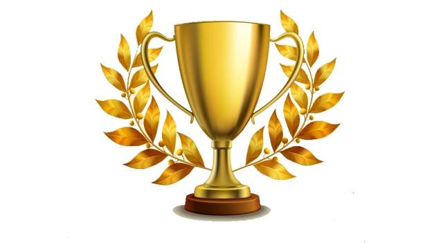 Resultado de imagem para award