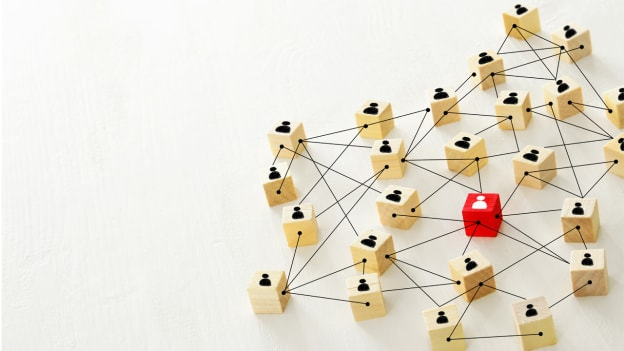 From hierarchies to network: How should HR leverage the power of networked teams