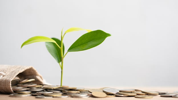 'Trickle' HR software gets £1 Mn in seed funding