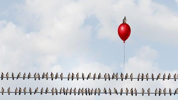 Social entrepreneurship: Can it curb unemployment?