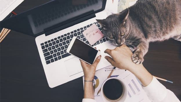 Work from home is here to stay: Report