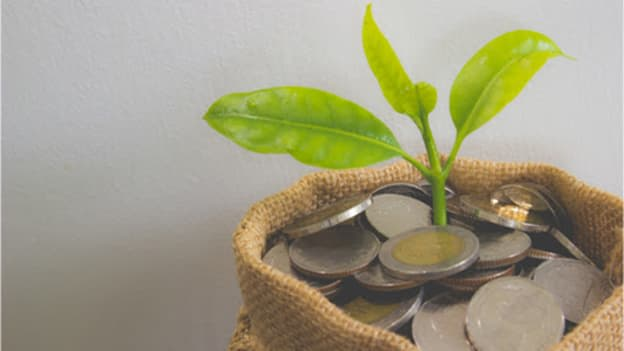 Pyn raises US$8m in seed funding round