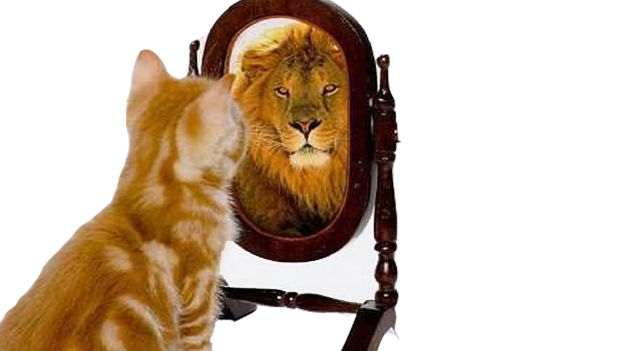 When Self-perception Is Greater Than Performance