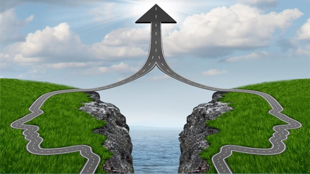 Bridging the 'Execution Gap' through top team alignment