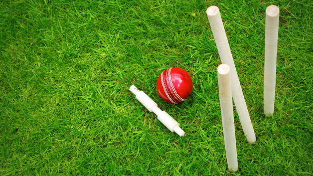 3 lessons that team leaders can learn from IPL