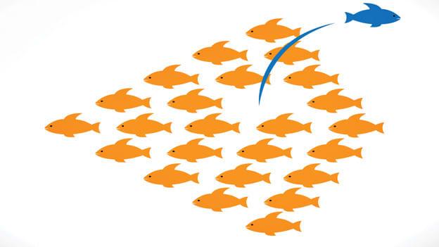 Building lasting leadership models