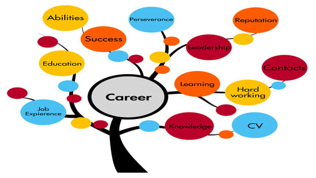 3 tips to keep tabs on career growth