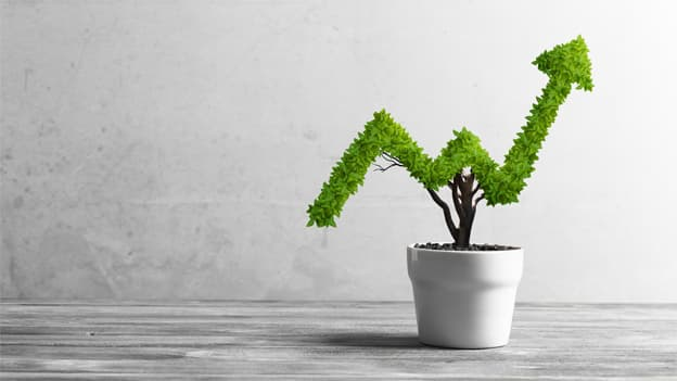 Four ways to spur organizational growth