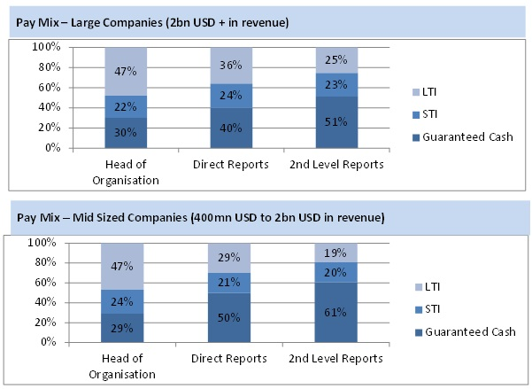 Pay mix at CXO level in large and mid-sized organizations