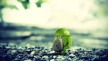 Google to push for home grown android developers