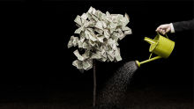 HR Fund Invests in PiQube