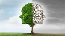 5 powerful ways to transform mindset