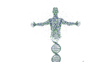 Mapping the DNA of a successful CEO: CEO Genome Project
