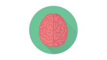 4D Brain Analysis to determine your career
