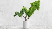 Here's how HR can drive business sustainability