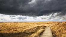 Ethical Storm Brewing: Corporate Governance At a Crossroads