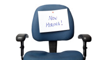 IT, pharma sectors to be biggest recruiters in 2013