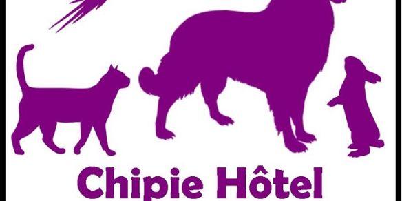 Chipie Hôtel