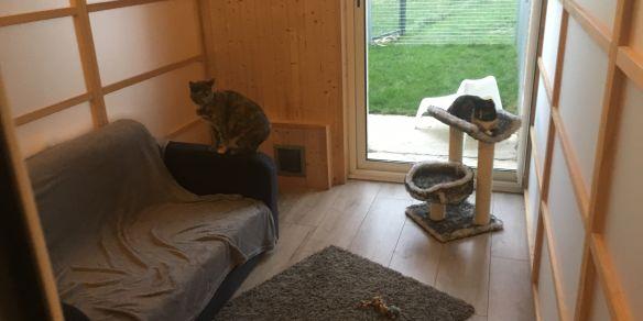 La Maison d'Hôtes Des Chats