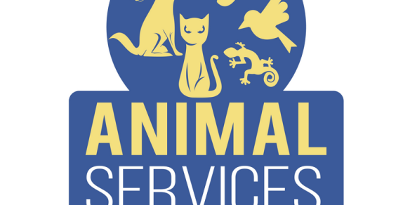 Animal Services 17