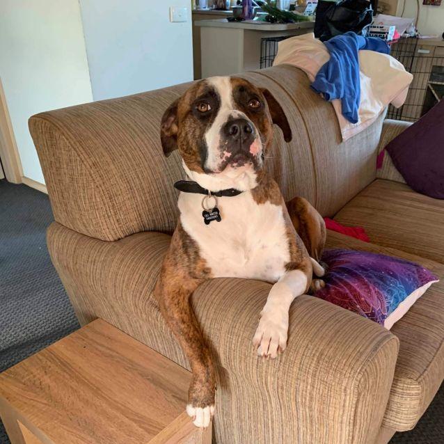 Photo of Benny