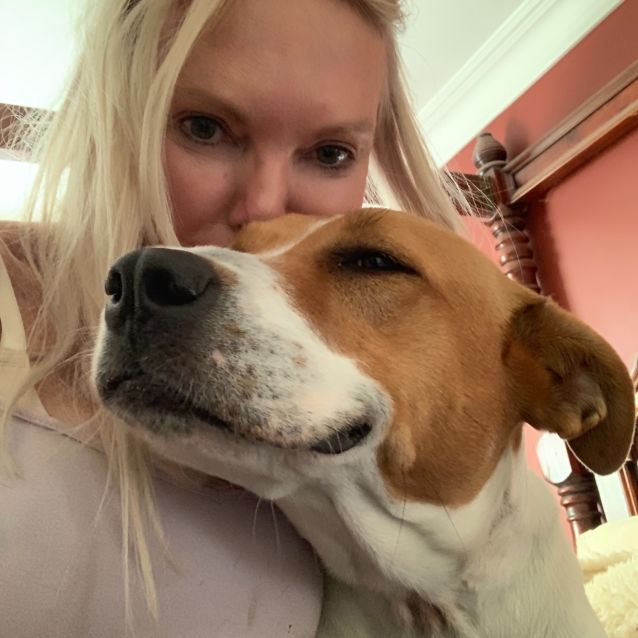 Photo of Rosie (On Adoption Trial)