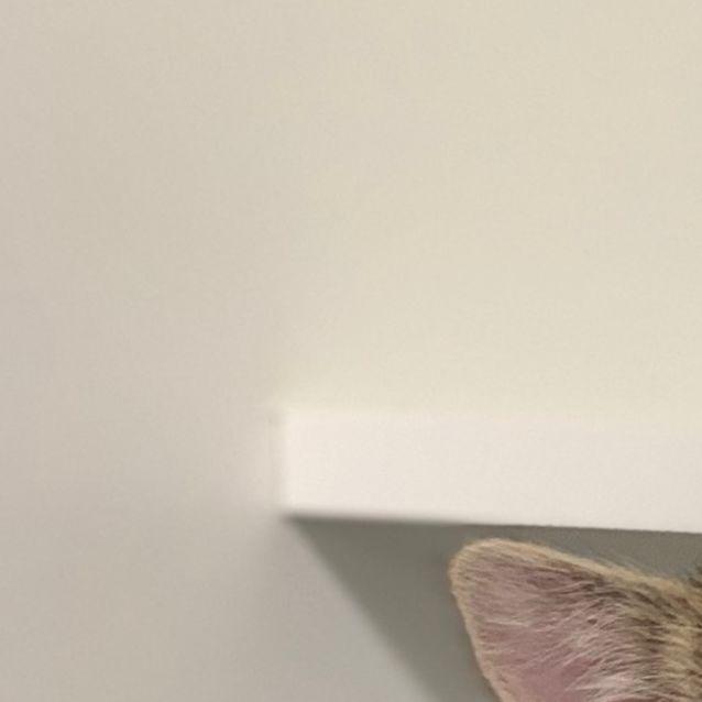 Photo of Helga