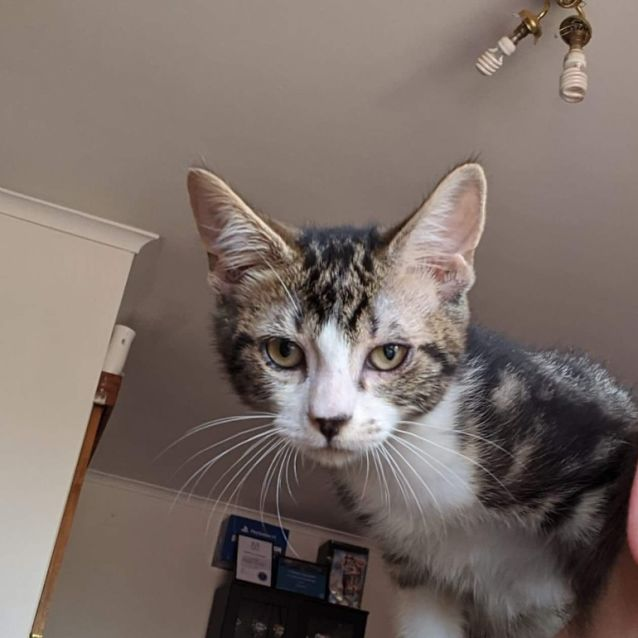 Photo of Ianto ❤
