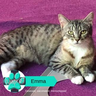 Emma-Lola