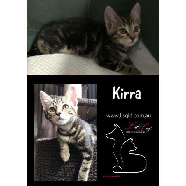 Photo of Kirra