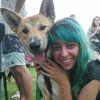 Photo of Pluto Dingo X