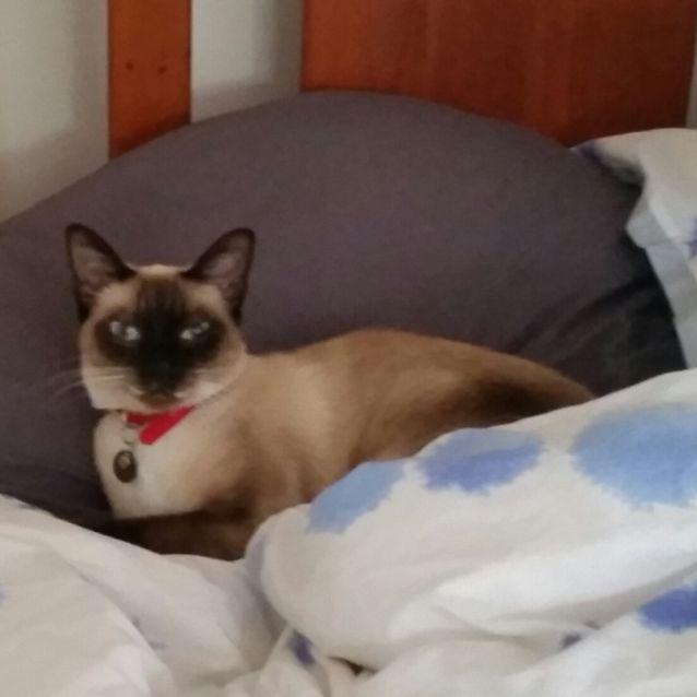 Photo of Bridget