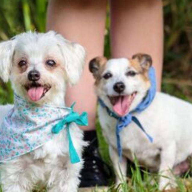 Photo of Max And Maddie 😝😛