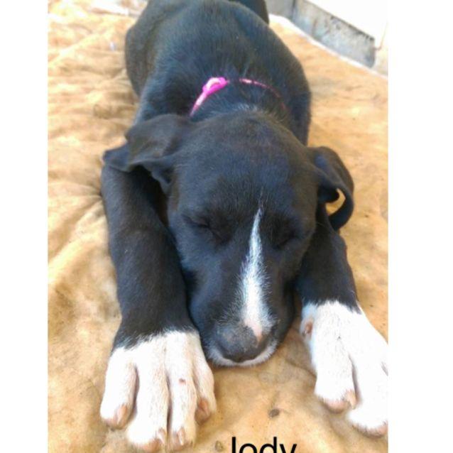 Photo of Jody