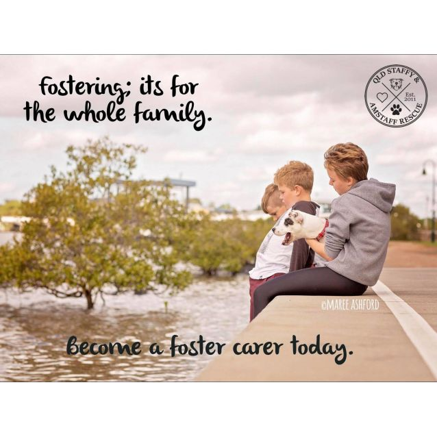 Photo of ****Foster Carers Needed****