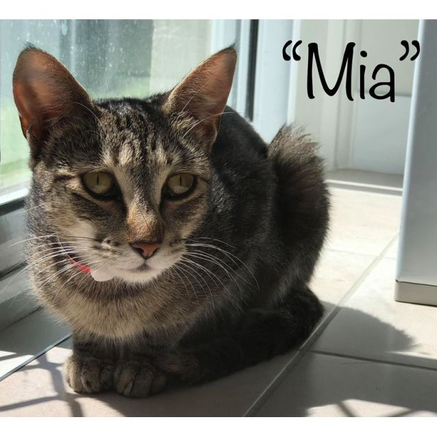 Photo of Mia