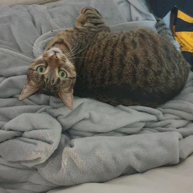 Photo of Arya